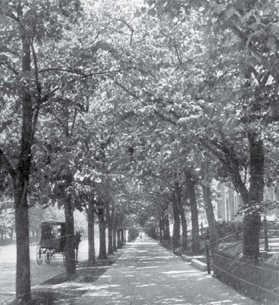 mass-ave-in-1913